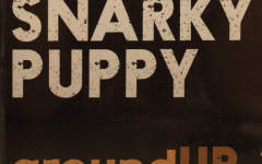 Pion-Ear: Snarky Puppy