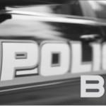 Police Beat: 2/19-2/25