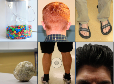 Guess Who: Teacher trademark edition