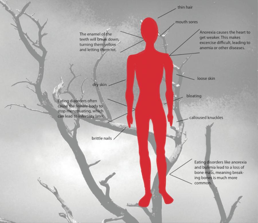 The Kirkwood Call Skinny Science
