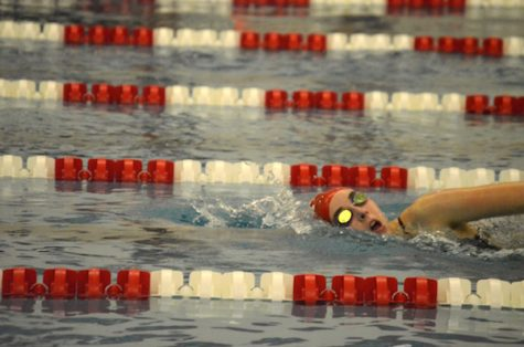 Photo gallery: girls' swimming vs. Parkway North
