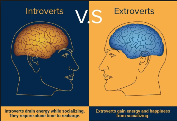 Where do you fall on the introvert to extrovert spectrum?