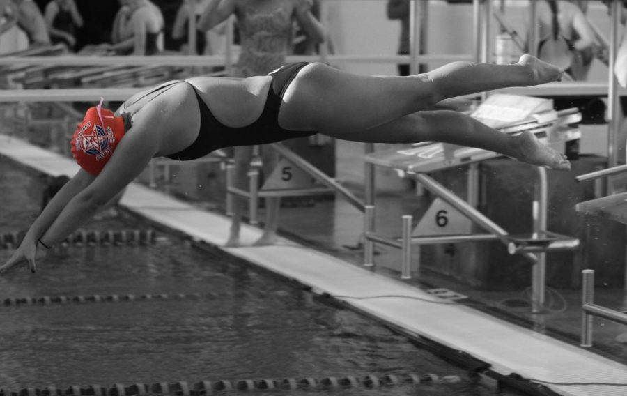 Mia Chitwood, sophomore, dives into the pool to begin a relay during practice.