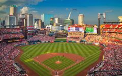Which St. Louis Cardinals player are you?