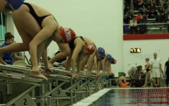 Swimmers prepare to dive before their race.
