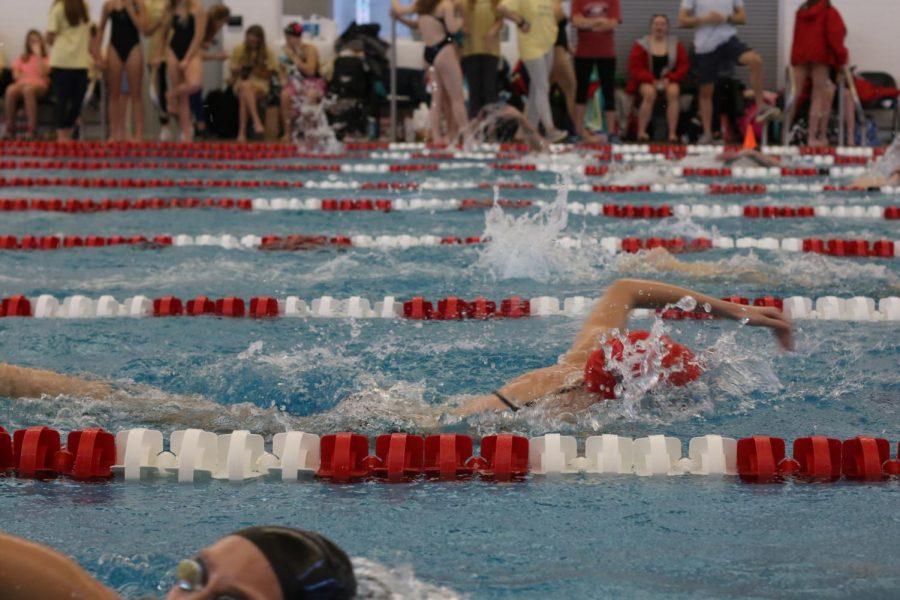 Sarah+Hickenbotham%2C+freshman%2C+races+in+the+500+freestyle.+