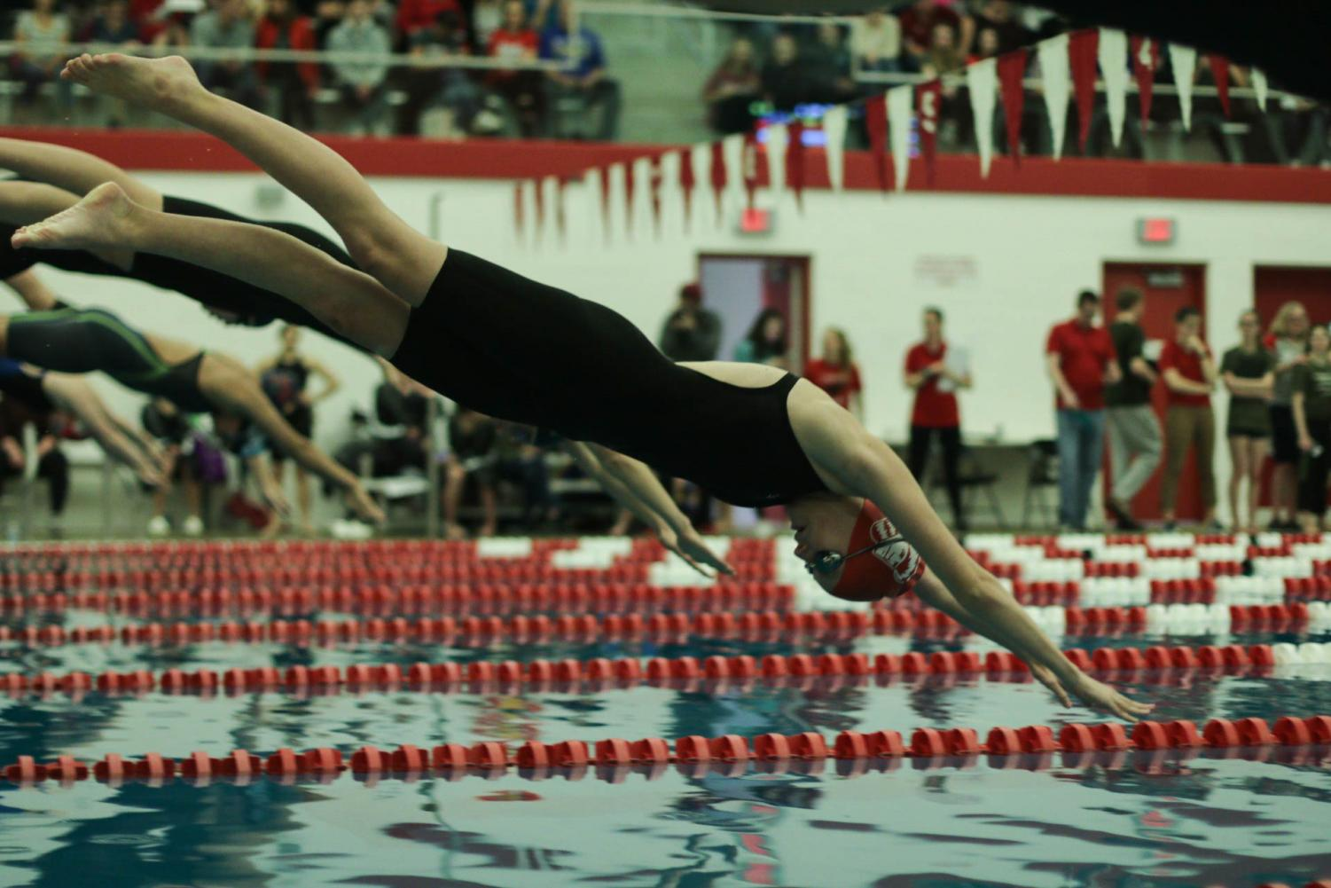 Sarah+Hickenbotham%2C+sophomore%2C+dives+into+the+100+butterfly.