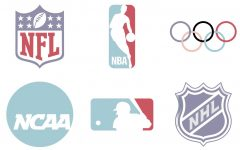Sexual misconduct in sports
