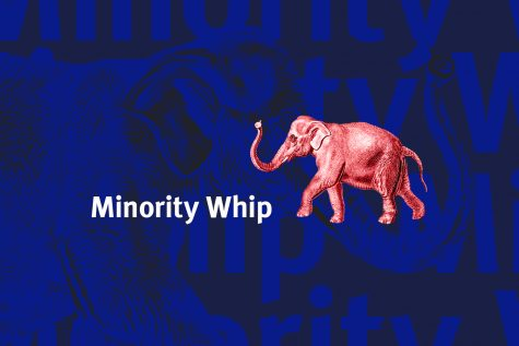 Minority Whip: Earth's lungs are burning?