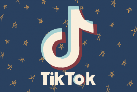 TikTok is a social media app that people use to make funny short videos.