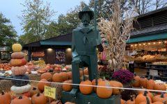 Photo Gallery: Kirkwood Farmers' Market in Downtown Kirkwood