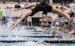 State season; girls' swim team places at state