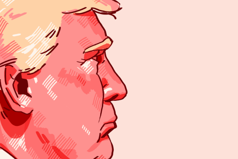 President Donald Trump is the incumbent candidate in the 2020 US presidential election.