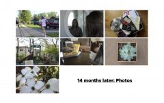 14 months later: Photos